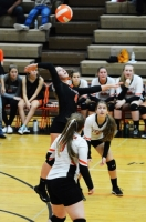 Gallery: Volleyball Rochester @ Centralia